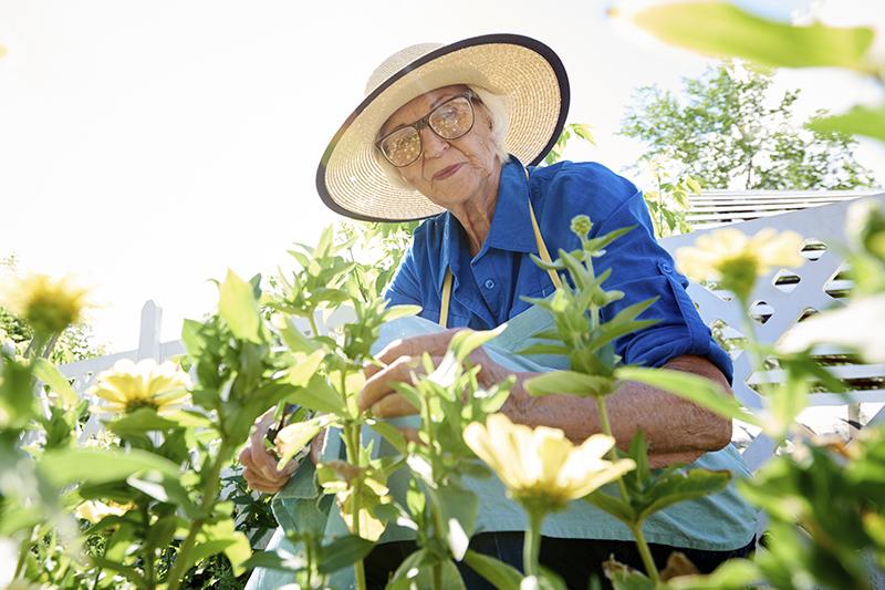 Maintain Wellness by Enjoying the Benefits of Gardening for Seniors